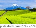 富士山 翠绿 鲜绿 27495274