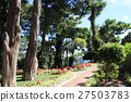 capri, capri island, augusto park 27503783