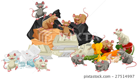Many rats searching the trash 27514997