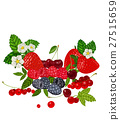 fruit, strawberry, raspberry 27515659