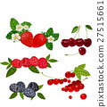 fruit, strawberry, raspberry 27515661