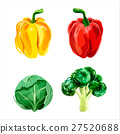Set of vector watercolor vegetables 3 27520688