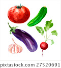 Set of vector watercolor vegetables 5 27520691