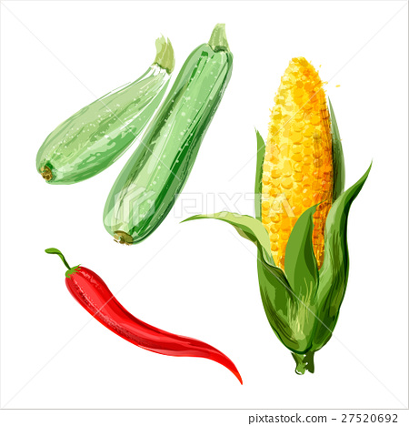 Set of vector watercolor vegetables 6 27520692