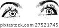 eye, eyelash, vector 27521745