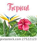 flower, blossom, bloom 27522123