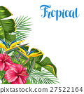 flower, leaf, blossom 27522164