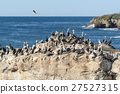Herd of birds on Natural Brides rock 27527315