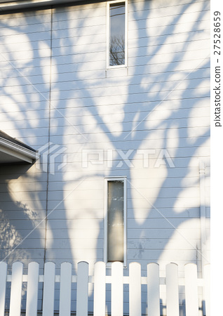 The shadow of the tree reflected on the wall 27528659