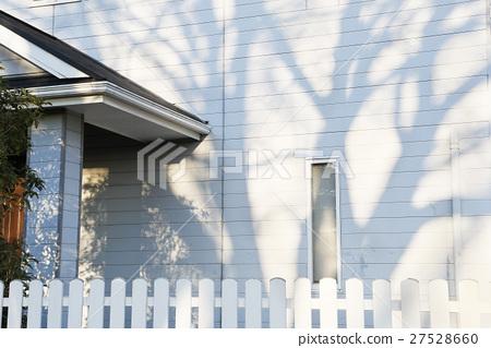 벽에 비치는 나무 그림자 27528660
