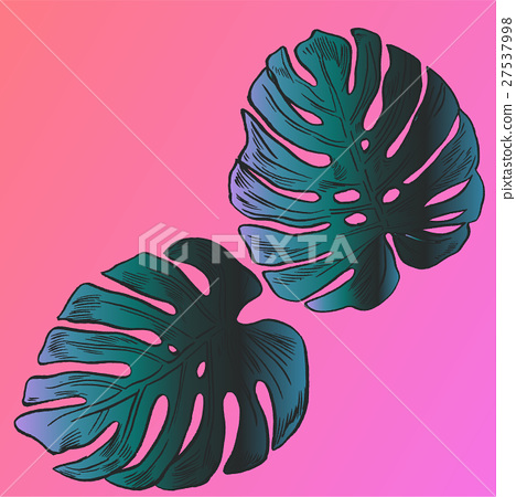 Exotic flowers set. Botanical vector vintage 27537998