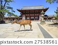 나라현 · 도다 이사의 중문와 사슴 27538561