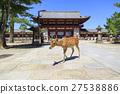 在奈良縣的Todai-ji寺的中間門和鹿 27538886