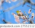 梅 花朵 花卉 27552112