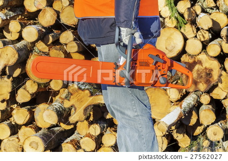 Lumberjack with chainsaw near pile of logs 27562027