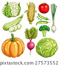 Farm vegetables vector sketch isolated icons set 27573552