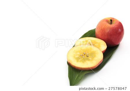 水果蘋果品種:青森縣生產的Takanori(Komitsu蘋果) 27578047