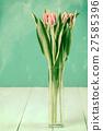 Wet Pink Tulip Flowers In Vase 27585396