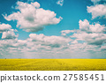 Yellow Rapeseed Flowers Field With Blue Sky 27585451