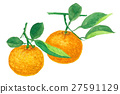 bitter orange, mandarin orange, citrus fruits 27591129