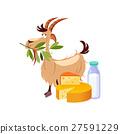 山羊 吃 奶酪 27591229