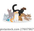 Cats Breeds Flat Vector Web Banner 27607967