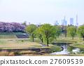 ฤดูใบไม้ผลิ,ดอกซากุระบาน,ซากุระบาน 27609539