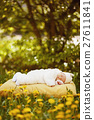 sleeping baby on big yellow pillow in flowers 27611841