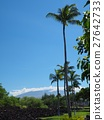 Scenery of Island of Hawaii 27642733
