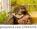 河馬 動物園 東山動物園 27644245