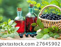 Bottles of tincture and basket of  blueberries 27645902