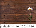 White daisy flower on wooden background. 27682348