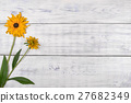 yellow flower on white background. 27682349