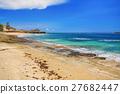 沿海 海滩 海洋 27682447