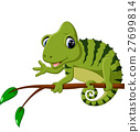 Cartoon cute Chameleon 27699814