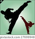 MARTIAL ARTS.Taekwondo karate fighting scene  27699948