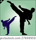 MARTIAL ARTS.Taekwondo karate fighting scene  27699950