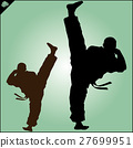 MARTIAL ARTS.Taekwondo karate fighting scene  27699951