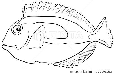 blue tang fish coloring page - Stock Illustration [27709368] - PIXTA