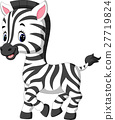 illustration of cute zebra cartoon 27719824
