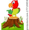 parrot, cartoon, tree 27719959