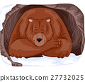 Grizzly Bear Hibernate 27732025