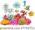 动物 珊瑚 礁 27744751