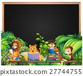 动物 阅读 书籍 27744755