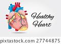 white, diagram, health 27744875