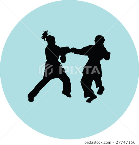Karate silhouette vector 27747156