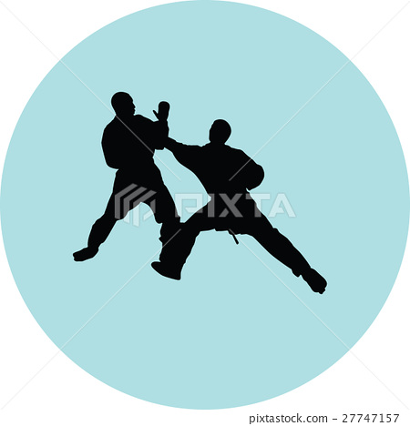 Karate silhouette vector 27747157