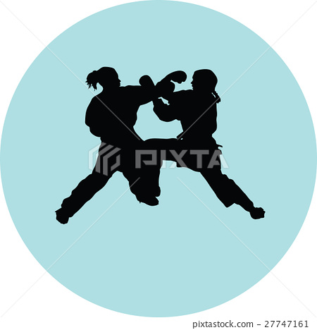 Karate silhouette vector 27747161
