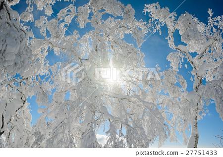 藍天和裂冰 27751433
