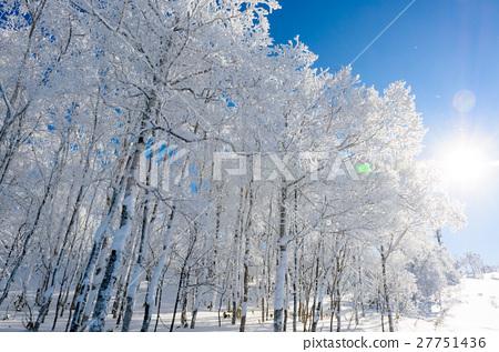 藍天和裂冰 27751436
